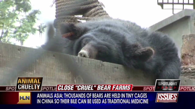 Critics want Asian bear farms closed