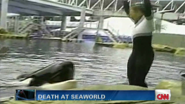 What caused trainer's death at SeaWorld?
