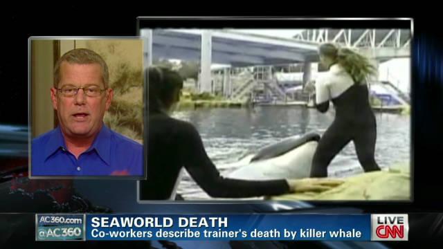 ac davioid kirby sea world death_00002001
