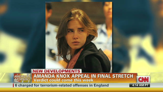 Amanda Knox appeal in final stretch