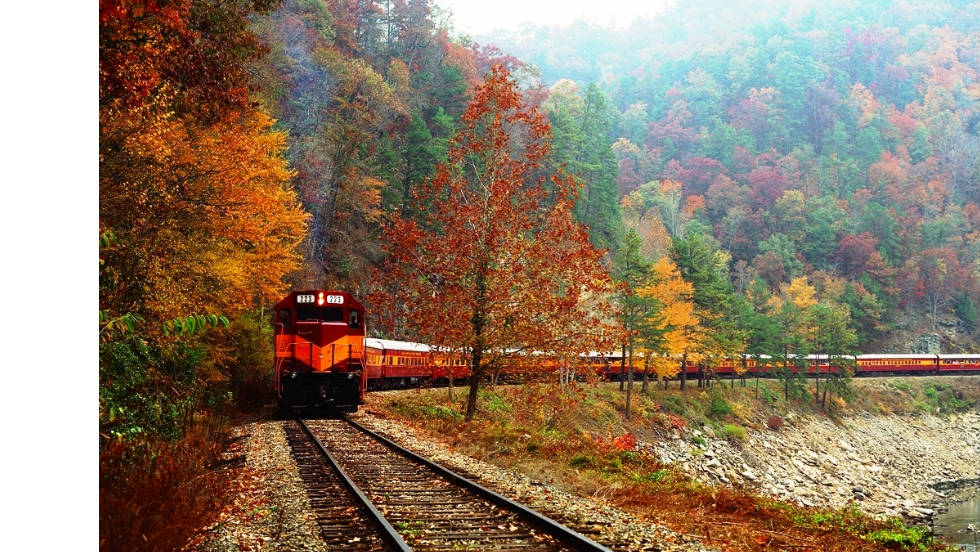 In North Carolina, the Great Smoky Mountains Railroad has two autumn color excursions.