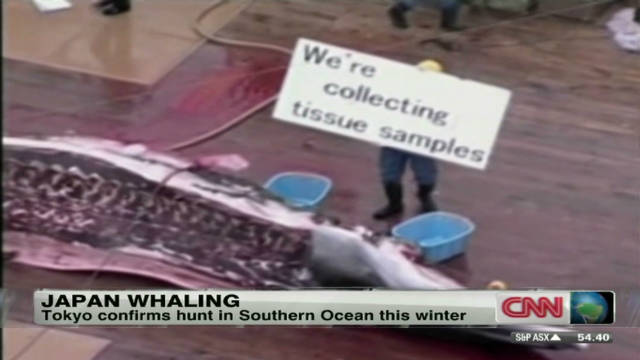 2011: War over whaling in Japan