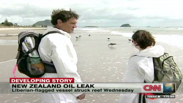 Oil disaster in New Zealand worsening