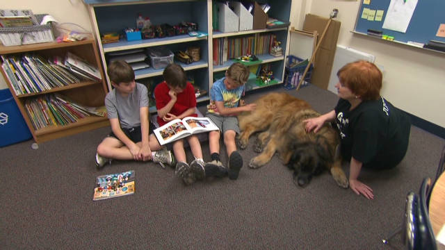 dogs helping children read_00002127