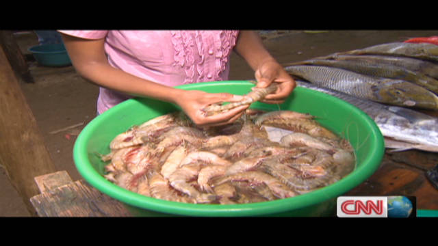 Prawns from Maputo