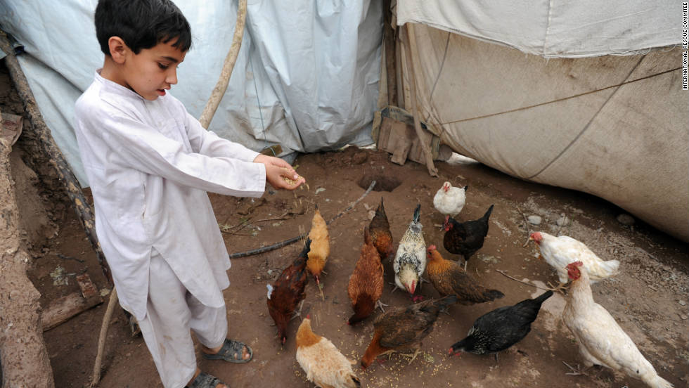 "More and more aid organizations are offering charity ""gift catalogs"" that offer tents, water cans, even livestock and poultry for families in need. For as little as $30, <a href=""http://gifts.rescue.org/"" target=""_blank"">you can buy a flock of chickens for a needy family from International Rescue Committee</a> as a ""symbolic gift"" for a friend or relative. The charity will often mail a beautiful holiday card to your loved one with a personalized message from you. So if you don't want another pair of slippers or scented lotion set this year, make sure to tell your family and friends about this great gift idea."