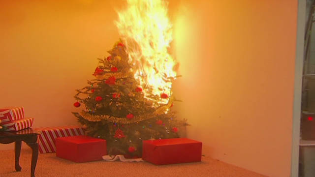 CSPC Holiday Safety demo_00001826