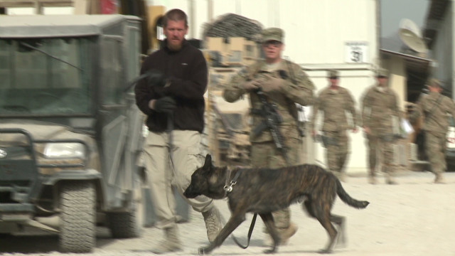 U.S. to have reduced Afghanistan role?