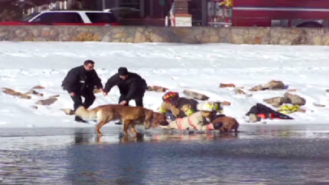 dnt co dog rescue ice_00001211