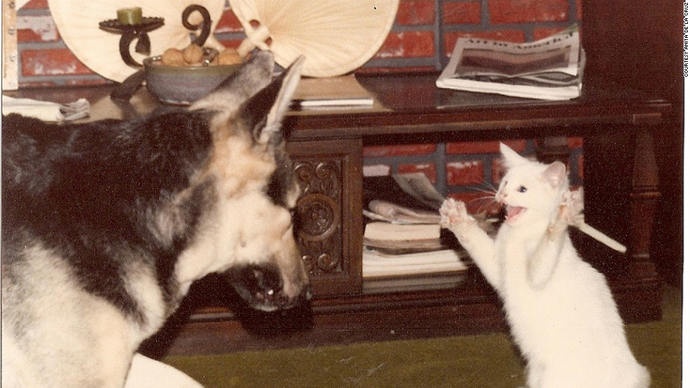 "Gretel, left, plays with Hansel, an adopted kitten. Anita de la Cruz used an Instamatic camera to take this photo in December 1977. ""It is special to have photos like these from the past to reminisce, laugh and share with others,"" she said."