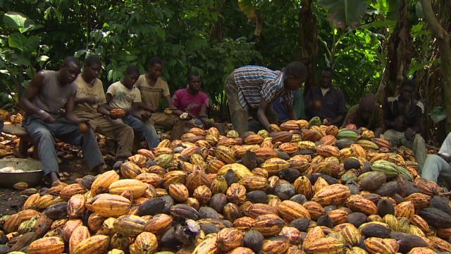 Teaching fair trade practices to kids
