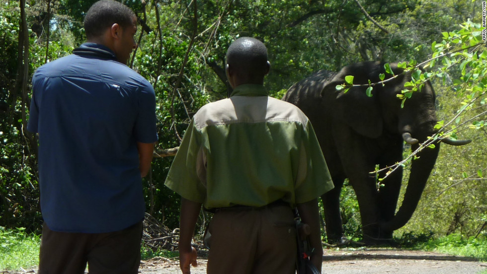Errol walks under the watchful eye of park ranger John.