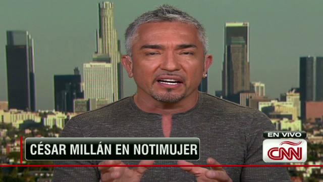 noti.millan.dog.whisperer.intv.mpg_00024607