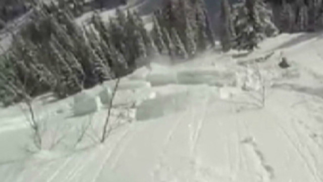 dnt tree saves man from avalanche_00012723