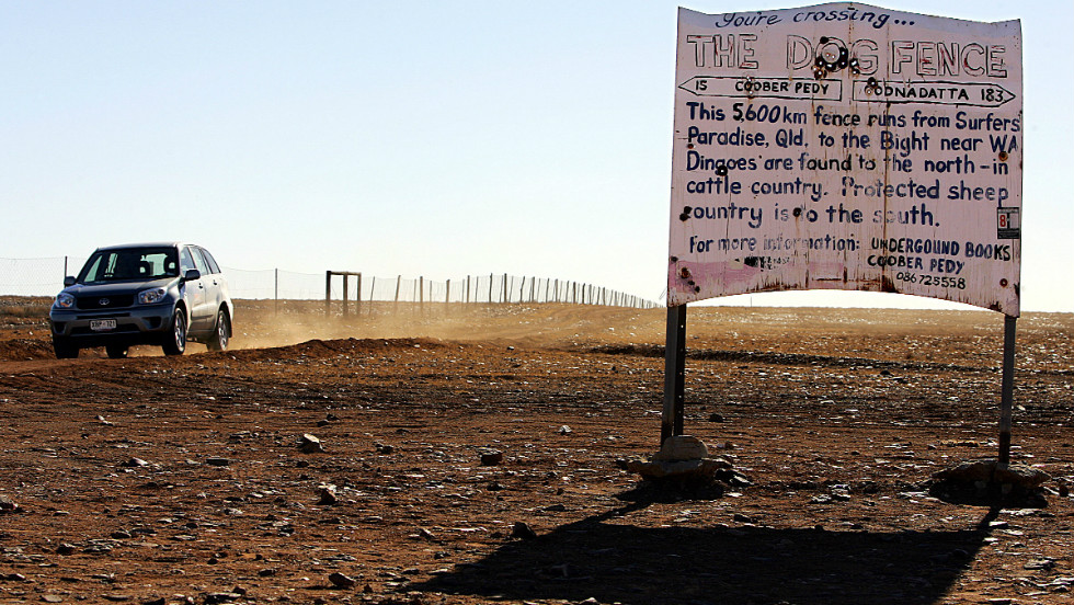 A fence, thousands of kilometers long, attempts to keep dingoes away from livestock in a file image from 2005.