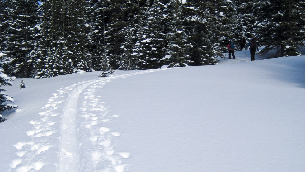 Skiers climb untouched powder not far from Turquoise Lake, near the Continental Divide in central Colorado.