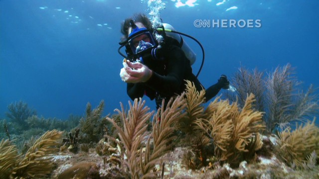 Bringing life back to coral reefs
