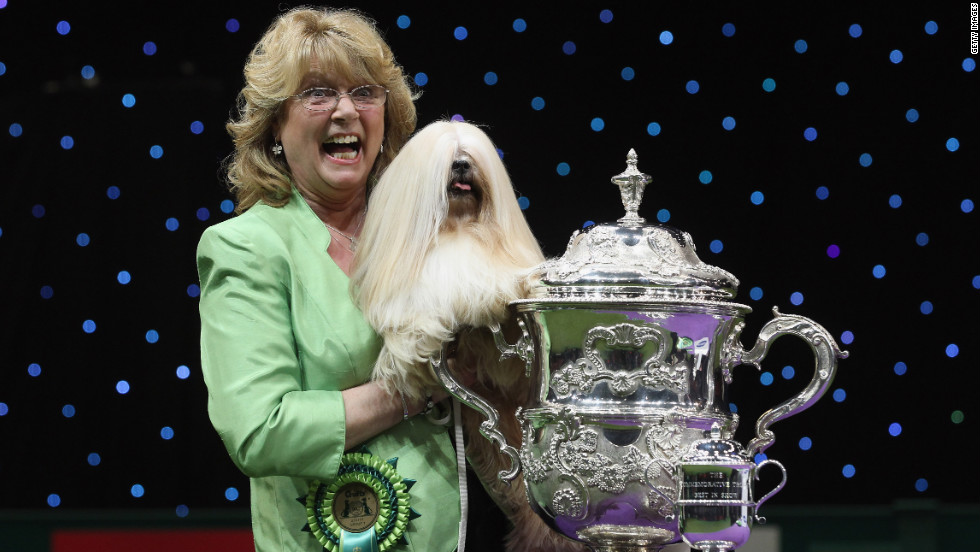 Elizabeth, a Lhasa Apso, and owner Margaret Anderson pose for photographs after winning Best in Show at Crufts on Sunday.