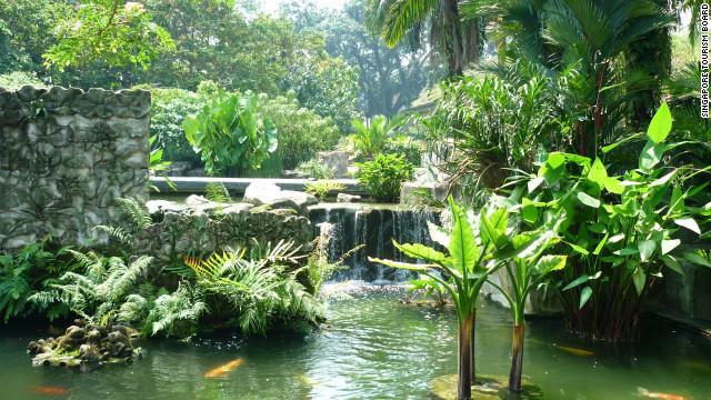 Singapore's Botanic Gardens