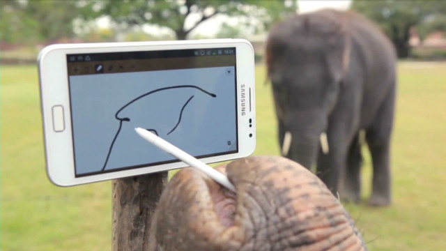 Elephant uses smartphone in Samsung ad