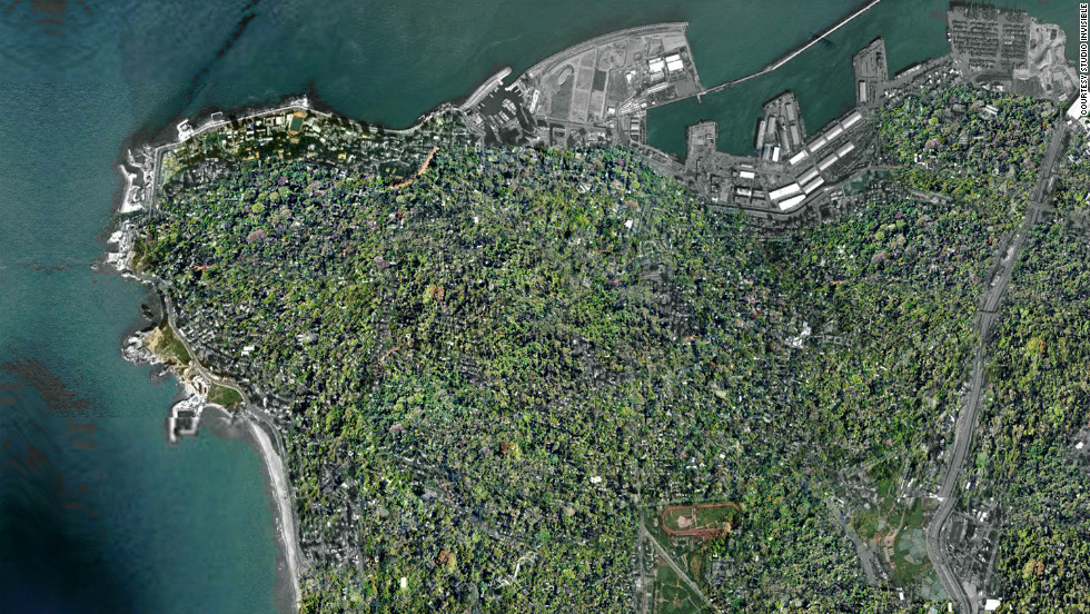 "A computer generated aerial view of the city after Wonder Forest has been installed. Melki says: ""Just imagine: The world's first rooftop garden city."""
