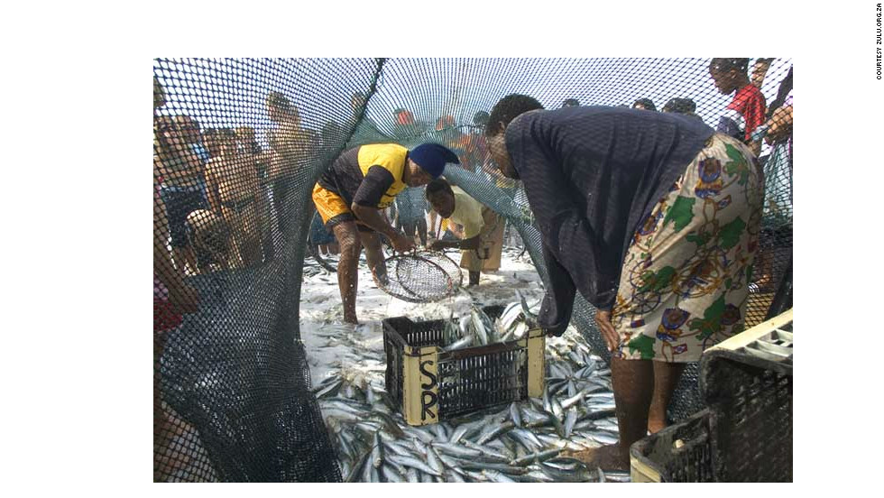 """The so-called """"Sardine Run"""" not only attracts a host of hungry sharks, dolphins and diving birds, but many an eager fisherman and tourist besides."""
