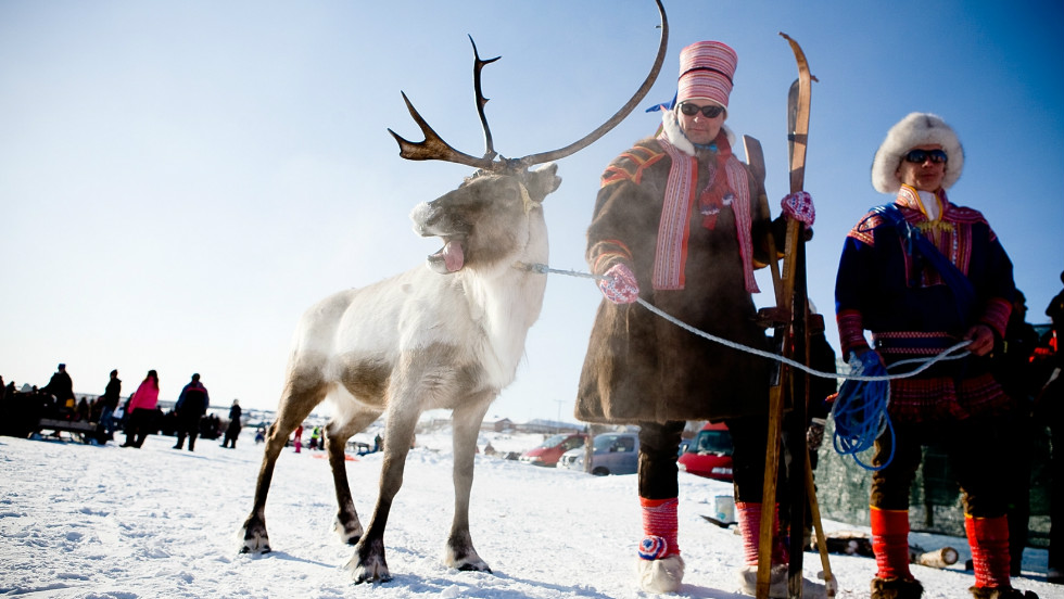 The reindeer share the region with the Sami, Europe's northernmost officially indigenous people, whose ancestral lands spread across Sweden, Norway, Finland and Russia.