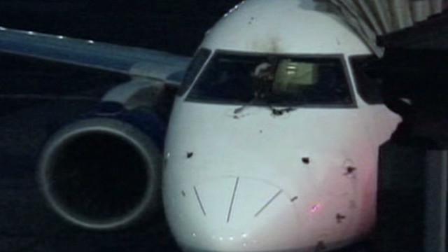 Bird strike leads to emergency landing