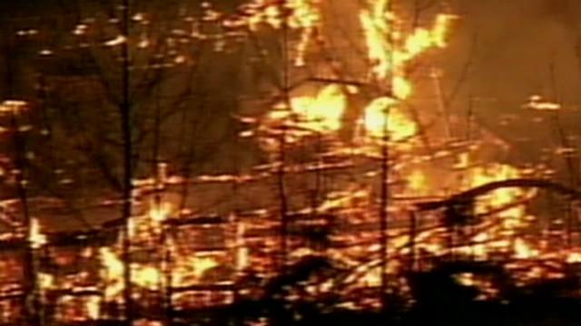 Al Qaeda calls for firebombing in U.S.
