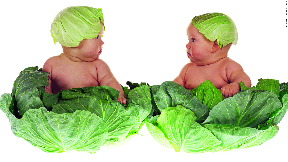 """Cabbage kids"""