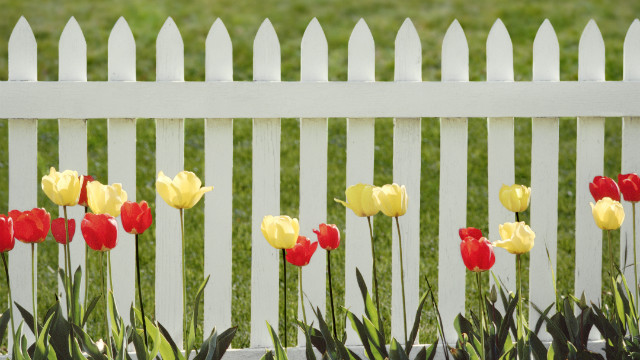Mending your fences with friends and family can be a healing process.