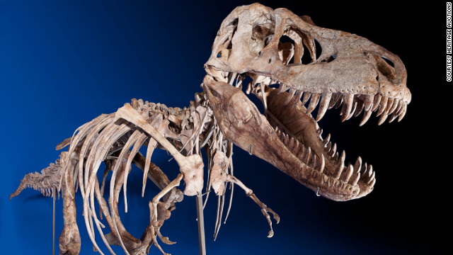A rare skeleton of a Tarbosaurus bataar was sold for $1.05 million before custody was granted to Mongolia.