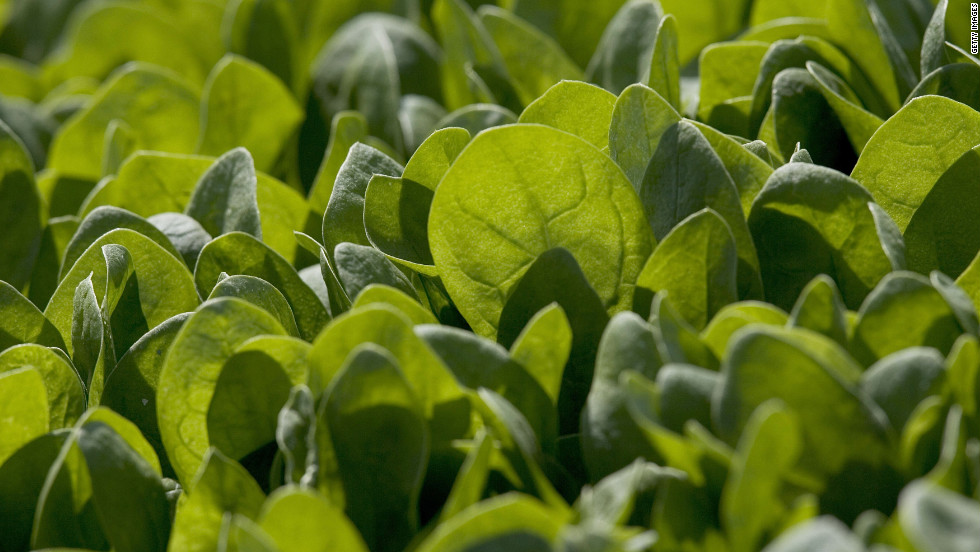 "Leafy greens like spinach can help reduce inflammation. Earlier <a href=""http://diabetes.diabetesjournals.org/content/early/2014/09/11/db14-0496.abstract"" target=""_blank"">research</a> shows nitrate in the plant has the potential to help convert ""bad"" fat cells, which are white, into beige cells which help to reduce obesity, Zinczenko says."