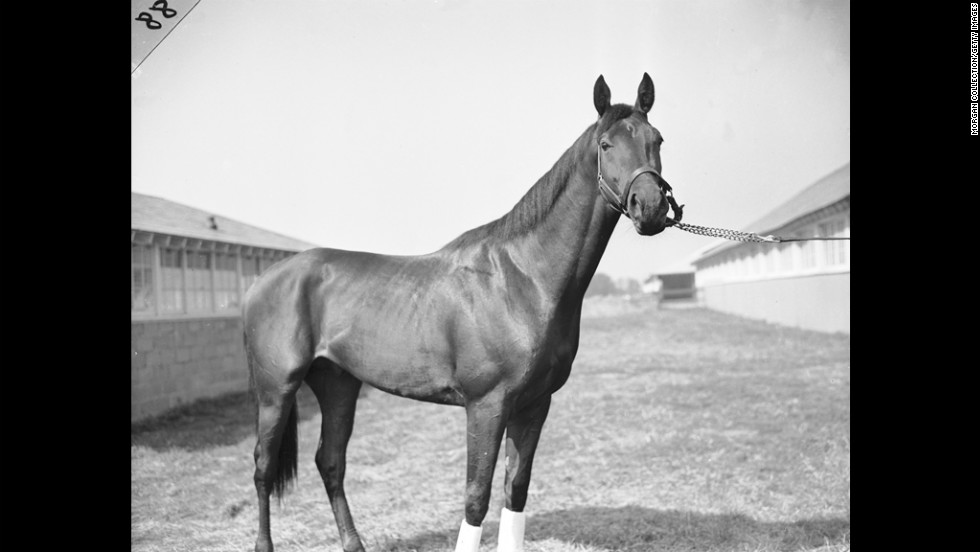 Citation won the Triple Crown in 1948.