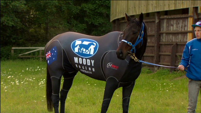 Black Caviar arrives for Royal Ascot