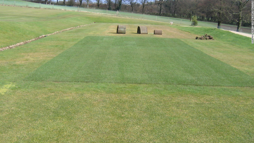 STRI staff use their facility to replicate the grass on Wimbledon's Centre Court and other sporting venues such as horse racing's Royal Ascot and Lord's cricket ground.