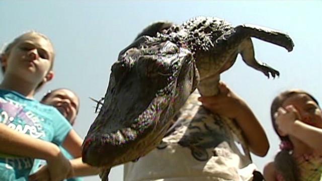 boy.catches.alligator_00005002