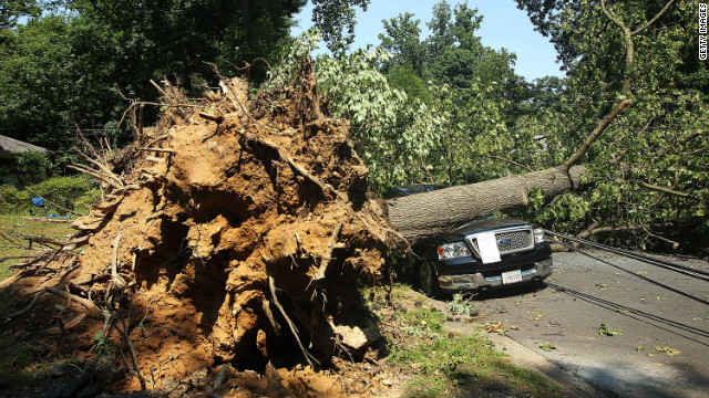 Winds uprooted trees throughout the D.C. area on Saturday, including this one that fell on a truck in Falls Creek, Virginia.