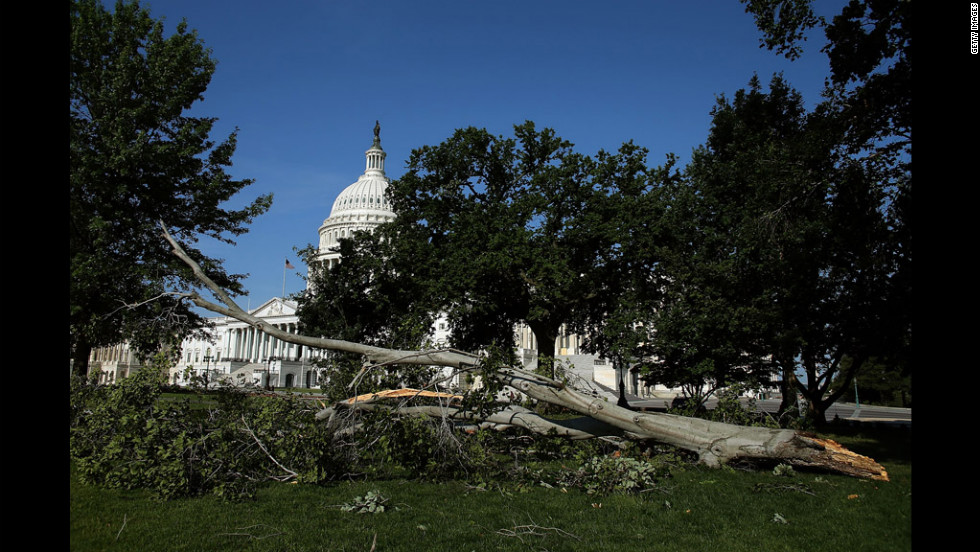 A fallen tree uprooted following heavy storms in the Washington area lies on the grounds of the U.S. Capitol on June 30,  the morning after a violent storm swept through the area.