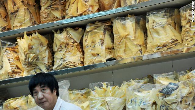 China cracks down on shark fin soup
