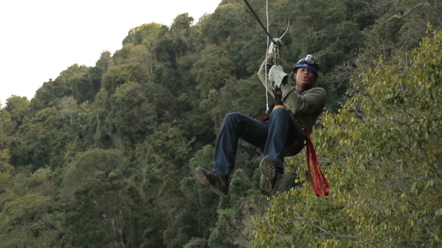 South Africa's forest canopy tour
