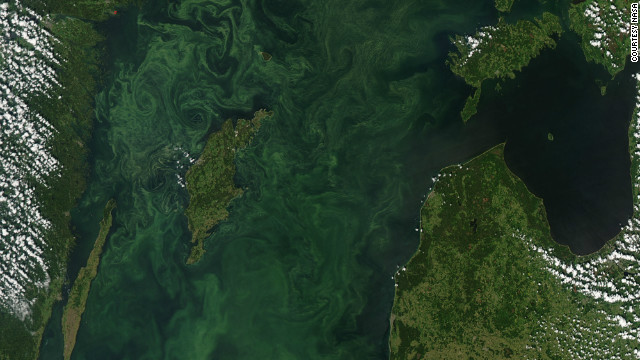 120716113043-baltic-algae-nasa-story-top.jpg