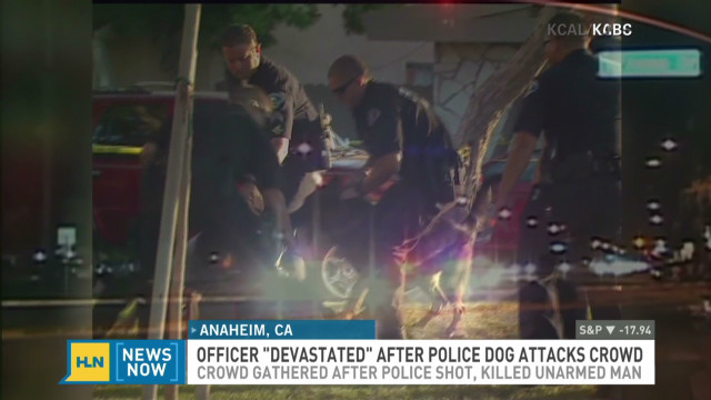 Anaheim protesters attacked by police dog