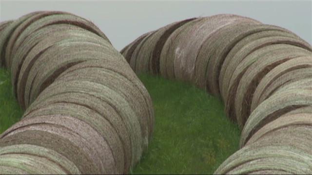 dnt drought puts hay at high demand_00011721