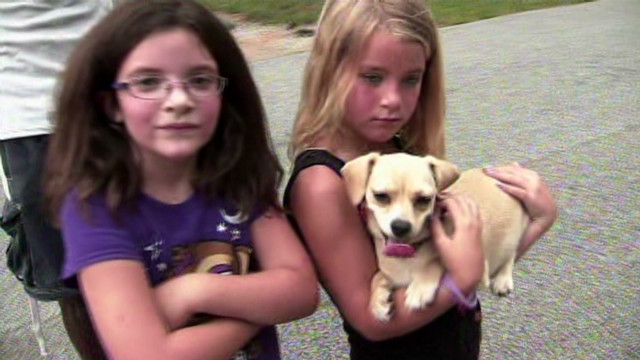 dnt chihuahua finds missing girls_00010125