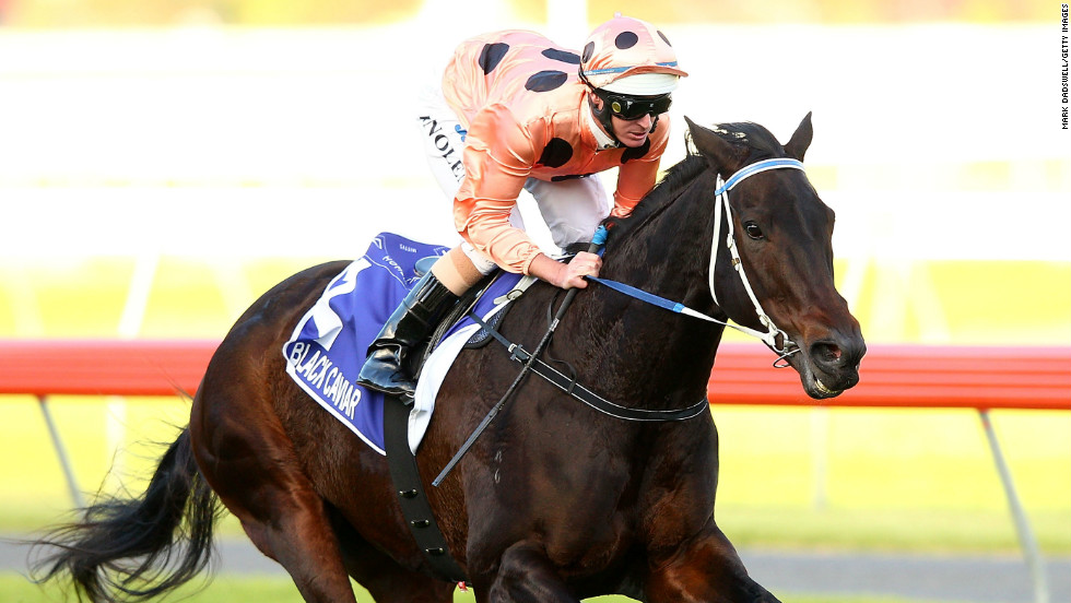 Black Caviar turned heads at Royal Ascot and has an impressive record on tracks in her home nation of Australia too -- winning 22 races overall. At 136, she is the highest-rated filly of all time according to race statisticians Timeform.