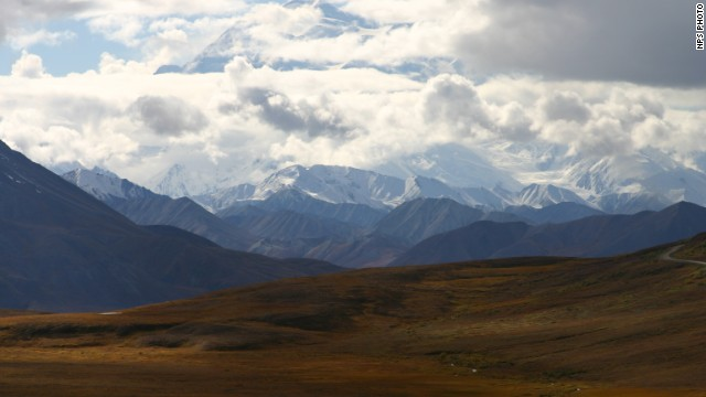 "The area of Denali National Park where a bear killed a man Friday is closed ""until further notice."""