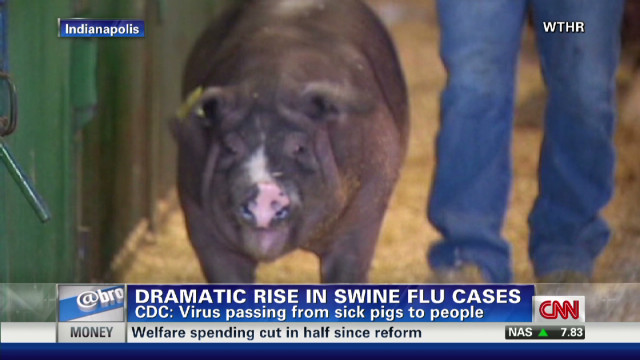 Swine flu cases appear in four states