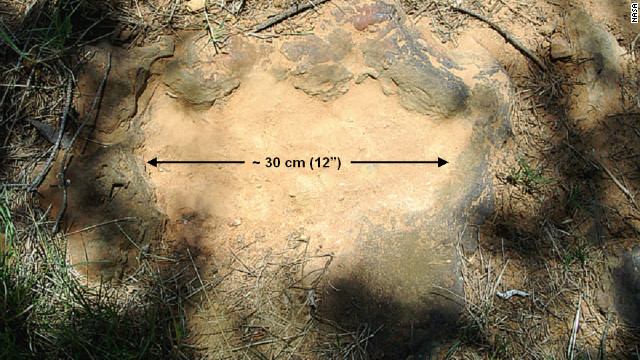 Dinosaur footprint found on NASA campus