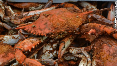 California recreational crabbing season on hold